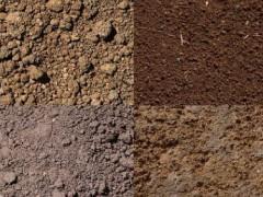 土壤检测费用高吗_土壤检测公司_土壤检测报告