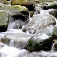 天然矿泉水检测
