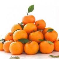 沙糖橘检测