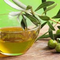 橄榄油检测