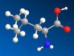 GB 5009.124-2016 食品安全国家标准 食品中氨基酸的测定 检测标准