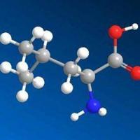 食品氨基酸检测