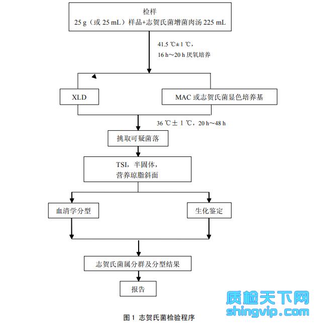图1 志贺氏菌检验程序