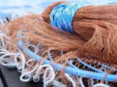 DB37/T 3102.1-2018 渔网线通用技术要求 第1部分聚丙烯渔网线 检测标准