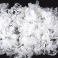 苏州羽绒羽毛项目检测多少钱,苏州羽绒检测机构