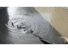 GB/T 14902-2012 预拌混凝土 检测标准