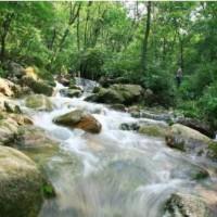 重庆井水水质检测 山泉水检测 农村井水检测中心