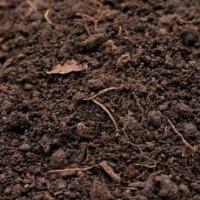 东莞土壤检测机构,东莞土壤有机质检测中心