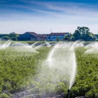 东莞市农业灌溉水检测到哪里,东莞渔业养殖水检测