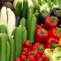 济南市农产品农药残留检测中心,蔬菜快检机构