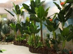 仿真植物检测报告需要多少钱