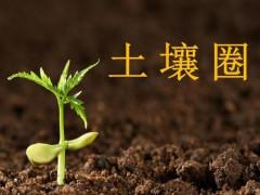 土壤检测调查,怎样勘察土壤?