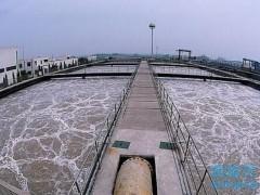 工业用水BOD5检测