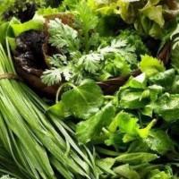 佛山蔬菜,肉类常规检测中心,食品安全检测机构